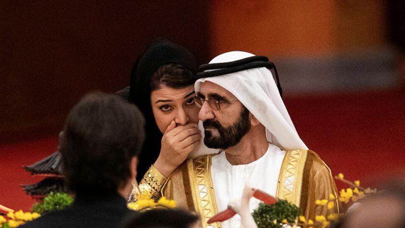 الإمارات تعلن عن هيكل جديد للحكومة