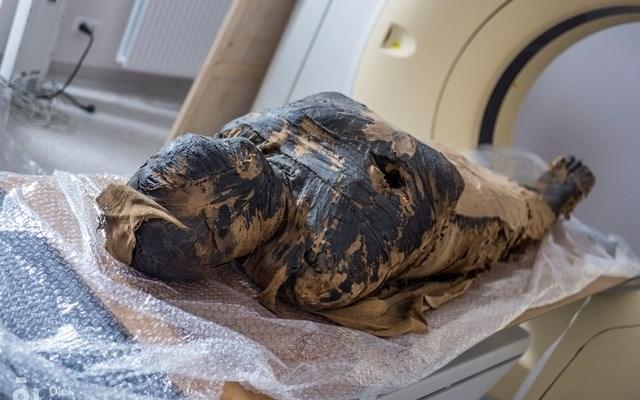 في سابقة.. اكتشاف مومياء مصرية حامل