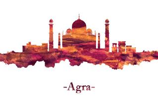 Agra Mehndi Design