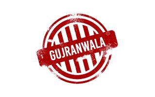 Gujranwala Mehndi Henna Design
