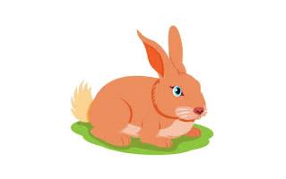 Rabbit Mehndi Design