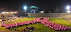 Zoom 11 nov Cancro