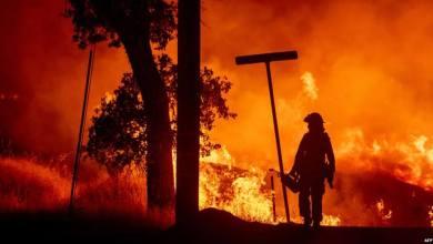 Photo of حريق غابات بشمال كاليفورنيا .. يتسبب في إجلاء جماعي للسكان