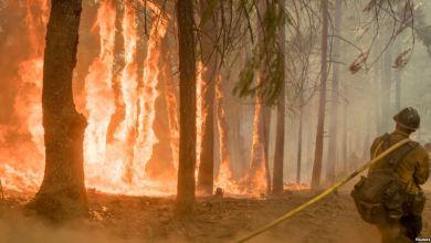 Photo of مصرع رجل إطفاء أثناء مكافحة حريق كاليفورنيا