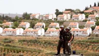 Photo of فلسطين تطالب الجنائية الدولية بالتحقيق في جرائم الاستيطان