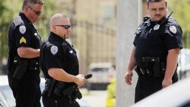 Photo of شرطة لوس أنجلوس تصادر 1000 بندقية من منزل أمريكي