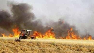 Photo of من الذي يشعل حرائق العراق الغامضة؟!