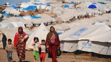 "Photo of اليوم العالمي للاجئين يرفع شعار ""مع اللاجئين: تقدم خطوة"""