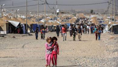 Photo of العراق ينفي نقل أسر الدواعش من مخيم الهول السوري لمخيمات نينوى