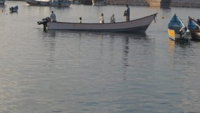Photo of القبض على 7 صيادين هنود بدعوى الصيد الجائر في المياه السيريلانكية