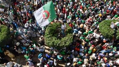 Photo of هل تعيق حكومة البدوي عمل لجنة الحوار في الجزائر؟