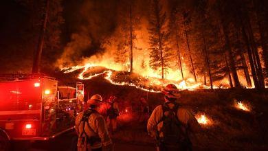 Photo of رئة الأرض تحترق .. ومستقبل مناخها يمضي نحو الأسوأ