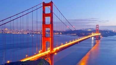 Photo of إنشاء أكبر جسر في العالم لعبور الحيوانات البرية بكاليفورنيا
