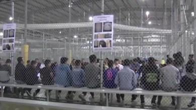 Photo of منظمات أمريكية تقاضي وكالة الهجرة والجمارك بشأن مراكز احتجاز المهاجرين