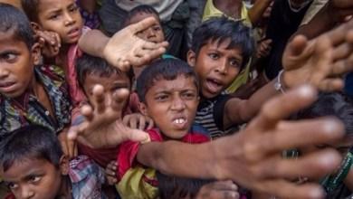 Photo of ربع مليون طفل من الروهينجا في بنجلاديش لا يحصلون على تعليم