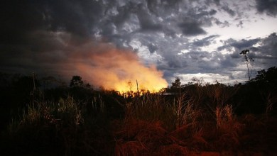 Photo of رئيس البرازيل يشترط اعتذار ماكرون لقبول المساعدة في إطفاء حرائق الأمازون