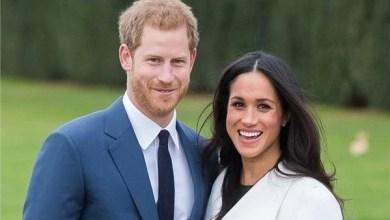 Photo of أنصار حماية البيئة يهاجمون الأمير هاري وزوجته ميجان