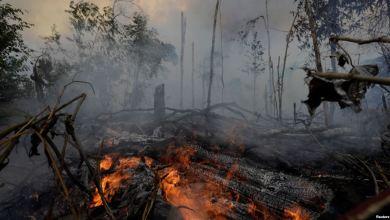 Photo of رئيس البرازيل يقلل من خطر حرائق الأمازون ويهاجم الإعلام
