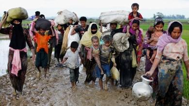 Photo of الغذاء العالمي يطلق أكبر عملية لإغاثة الروهينجا في بنجلاديش