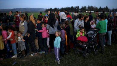 Photo of اليونان تعتزم إعادة 10 آلاف مهاجر إلى تركيا عام 2020
