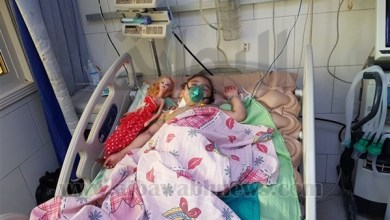Photo of تفاصيل صادمة جديدة بقضية الطفلة المصرية ضحية جدتها