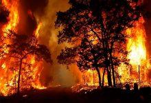 Photo of تراجع حدة حرائق الغابات في جنوب كاليفورنيا