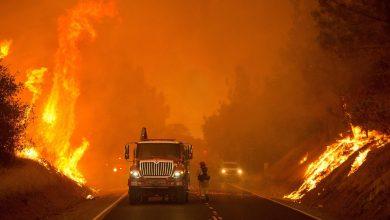 Photo of حاكم كاليفورنيا يحمل شركات كبرى مسؤولية انقطاع الكهرباء بالولاية