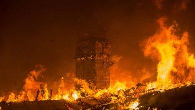 Photo of السلطات تأمر بإجلاء 50 ألف شخص جراء الحرائق في كاليفورنيا