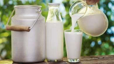 Photo of دراسة حديثة: شرب الحليب لا يطيل العمر كما كان يُعتقّد!