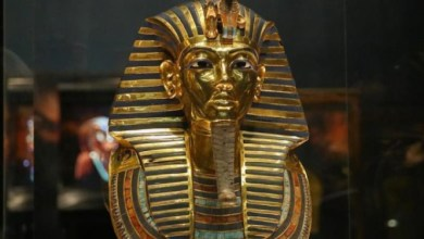 Photo of عالم مصري: سنعلن للعالم سبب وفاة توت عنخ آمون في فبراير القادم