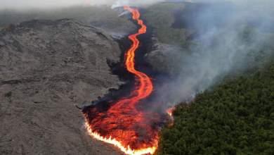 Photo of انتشال 6 جثث من جزيرة بركانية في نيوزيلندا