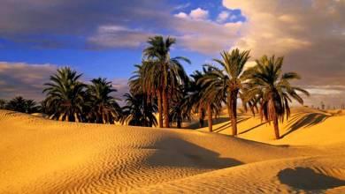 "Photo of ""دوز"" التونسية.. أيقونة السياحة الصحراوية في كل المواسم"