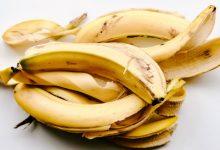 Photo of هل فكرت في تناول قشر الموز؟.. فوائده العديدة قد تغير رأيك