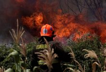 Photo of رفع التحذير إلى اللون الأحمر وسط تشيلي بسبب حرائق الغابات