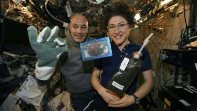 Photo of كم استغرق إعداد أول كعكة في الفضاء؟