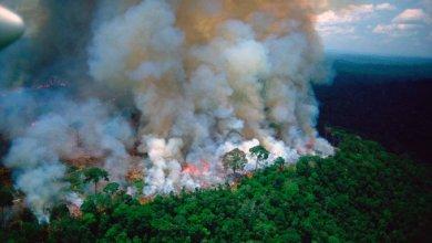 Photo of رئات الأرض تحترق.. وسكانها يختنقون.. فمن السبب؟