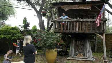 Photo of طبيب أمريكي يعزل نفسه فوق شجرة