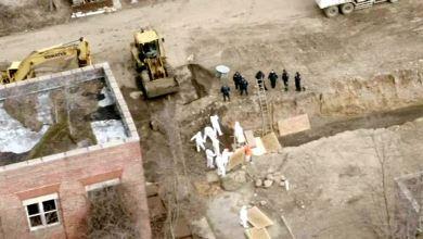 Photo of سجناء يشاركون في دفن جماعي لوفيات كورونا في جزيرة بنيويورك