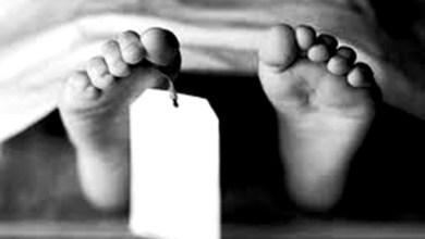 Photo of رضيع أمريكي عمره 6 أسابيع.. أصغر ضحايا كورونا في العالم