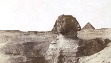 Photo of التُقِطَت قبل 200 عام.. متحف سان فرانسيسكو  ينشر صورًا لتاريخ مصر