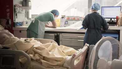 Photo of ارتفاع إصابات السالمونيلا إلى 640 شخص فيما تسجل كندا 239 حالة