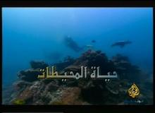 حياة المحيطات