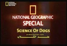 صورة علم الكلاب