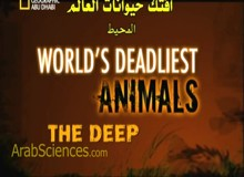 أفتك حيوانات العالم : المحيط