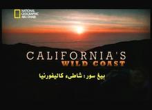 بيغ سور : شاطئ كاليفورنيا
