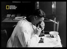 قضية للتشريح : الإنفلونزا عام 1918