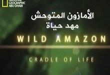 الأمازون المتوحش : مهد الحياة