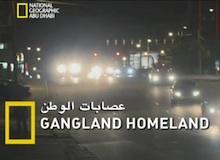 عصابات الوطن