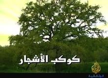 كوكب الأشجار