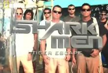 رجال القرش الأبيض : هرب القرش النمر